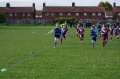 under 8's wyke v titans and lions still