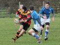 Thornton 1st XV v Old Bedians still