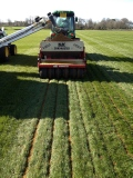 Hollybush pitch preparation continues still