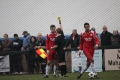 Welling United Vs Basingstoke still