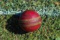 Weekly Cricket Report - Week 5 - Saturday 18th May 2013