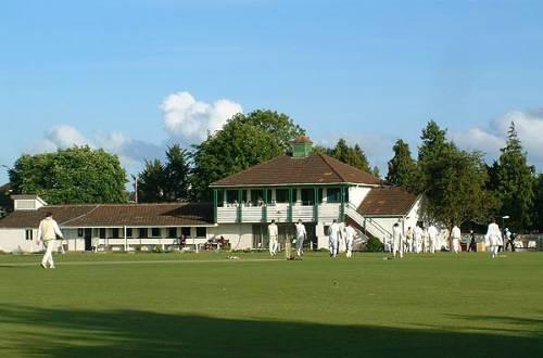 cricket team building