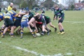 Chipstead V's Weybridge Vandals still