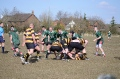 Waterloo 2nd XV still