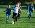 2013-05-22 Methley V Falcons still