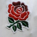 England Autumn International Tickets, Twickenham image