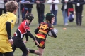 Shaw Cross Sharks U7's V Newsome Panthers U7's 07/04/2013 still