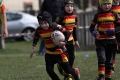 Kippax U7's V Shaw Cross Sharks U7's 14/04/2013 still