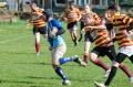 2013/04/20 1st XV Home v Old Bedians still
