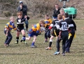 WRFC Minis Festival still