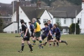 Stoke Under 14s v Tamworth
