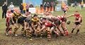Gorseinon v Pontarddulais ( SWALEC Division 3 West - 23 March 2013 )