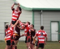 Gorseinon v Llanelli Wanderers ( SWALEC Division 3 West - 30 March 2013 )