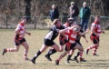Gorseinon v Llandeilo ( SWALEC Division 3 West - 6 April 2013 )