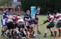 U15s TMV Hawks - Waterloo game2 Southport Tournament