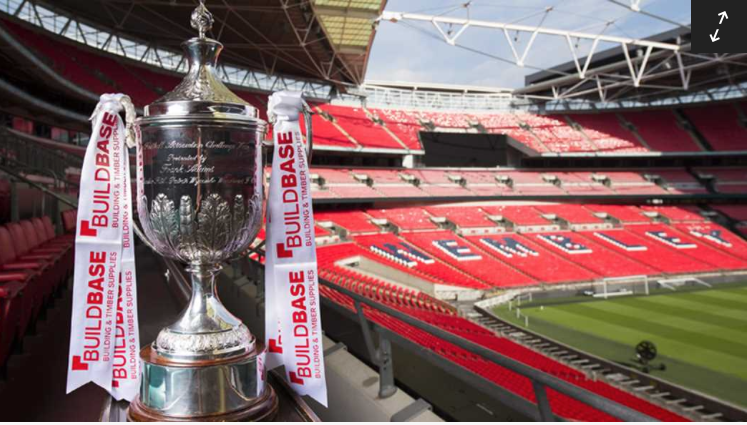 Fa Vase Draw Swans Travel To Bodmin News Swanage Town And