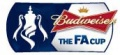 THE FA CUP WITH BUDWEISER image