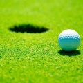 Golfers set for Friday tournament image