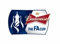 ANOTHER HOME DRAW IN THE FA CUP image