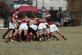 DU Rugby opens Cowboy Cup with solid win