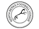 North Berks Football League