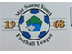 Mid Solent Youth Football League